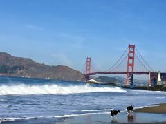 [Photo : Plage de San Francisco avec vue sur le Golden Gate Bridge]