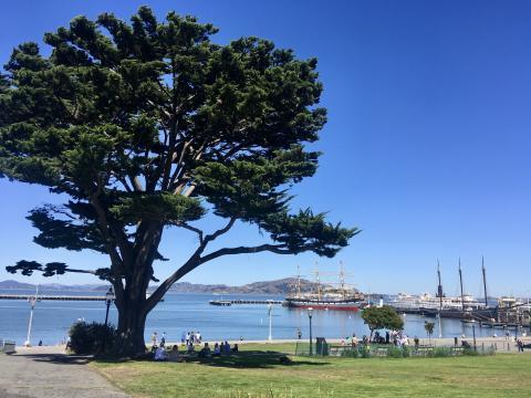 Photo : Promenade en famille le long de la Baie de San Francisco, visite en petit groupe et en français