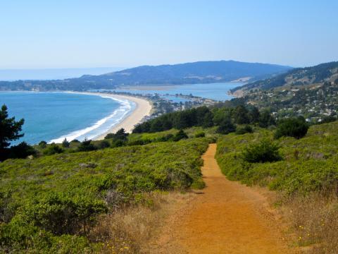 Photo : chemin de randonnée avec vue sur l'Ocean Pacifique
