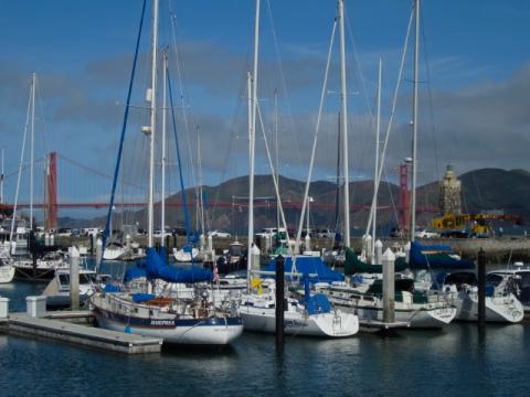 Photo : Bateau à voile dans le port avec vue sur le pont du Golden Gate