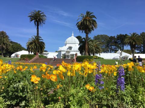 Photo : Conservatory Of Flower dans le Golden Gate Park