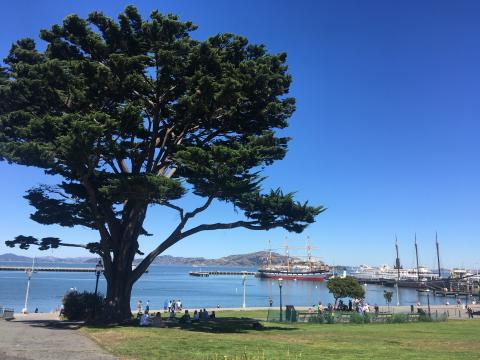 [Photo : Aquatic Cove une plage un site historique et lieux de promenade à San Francisco]