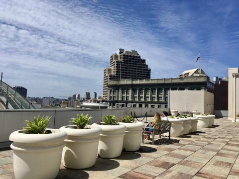 Pause dans un jardin sur un toit à San Francisco. Roof tops San Francisco