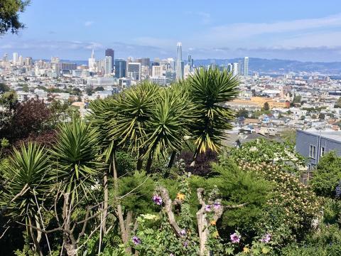 [Photo : un jardin sur les collines de San Francisco avec vue sur le Downtown]