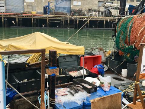 Photo : bateau de pêche dans la Baie de San Francisco