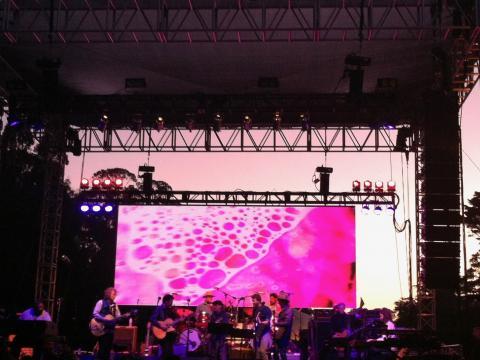 Photo : Festival de musique live dans le Golden Gate Park San Francisco
